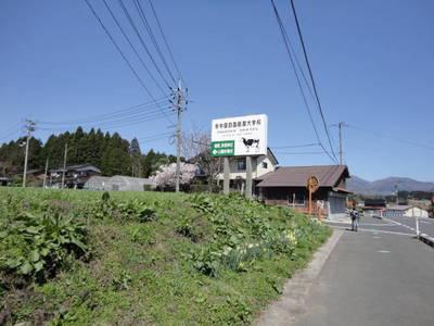 DSC04460.JPG